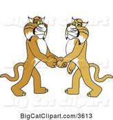 Vector Clipart of a Cartoon Bobcat School Mascot Shaking Hands with a Friend, Symbolizing Gratitude by Toons4Biz