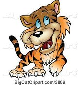 Vector Clipart of a Happy Cartoon Blue Eyed Tiger Walking by Dero