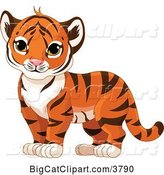 Vector Clipart of a Tiger Cub Standing by Pushkin
