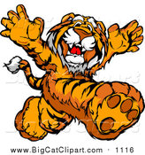 Vector Clipart of a Tiger Mascot Running Upright by Chromaco
