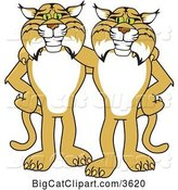 Vector Clipart of Cartoon Bobcat School Mascots Standing with the Arms over Each Other's Shoulders, Symbolizing Loyalty by Toons4Biz