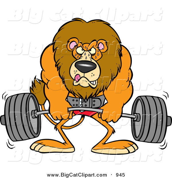 Big Cat Cartoon Vector Clipart of a Cartoon Male Lion Weightlifting