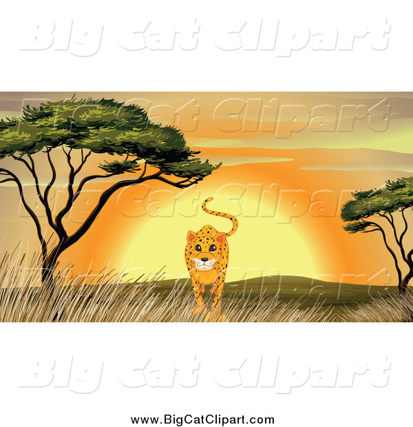 Big Cat Cartoon Vector Clipart of a Cheetah Walking by an Acacia Tree at Sunset