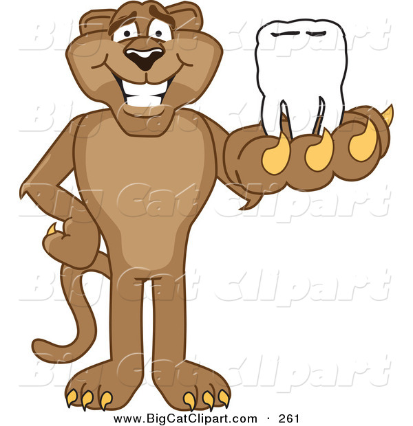 Big Cat Cartoon Vector Clipart of a Happy Cougar Mascot Character Holding a Tooth