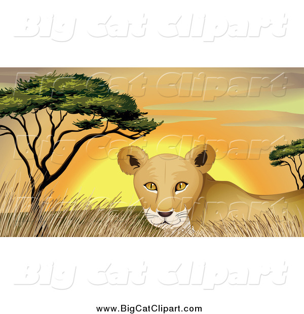 Big Cat Cartoon Vector Clipart of a Lioness in Grass at Sunset