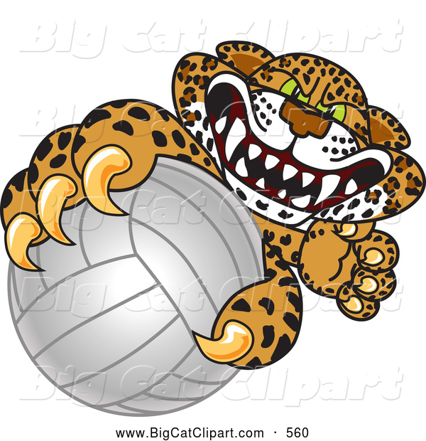 Big Cat Cartoon Vector Clipart of a Mad Cheetah, Jaguar or Leopard Character School Mascot Grabbing a Volleyball