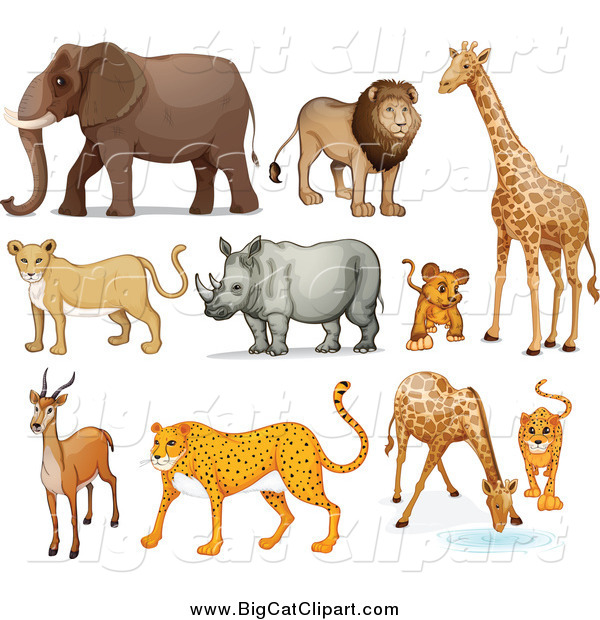 Big Cat Cartoon Vector Clipart of Lions, and African Zoo Animals