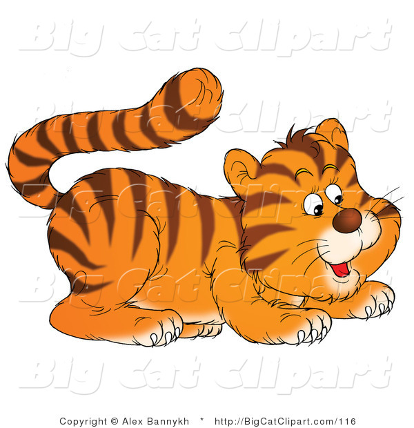 Big Cat Clipart of a Frisky Tiger Cub Crouching