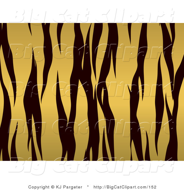 Big Cat Clipart of a Gold and Black Tiger Stripes Background