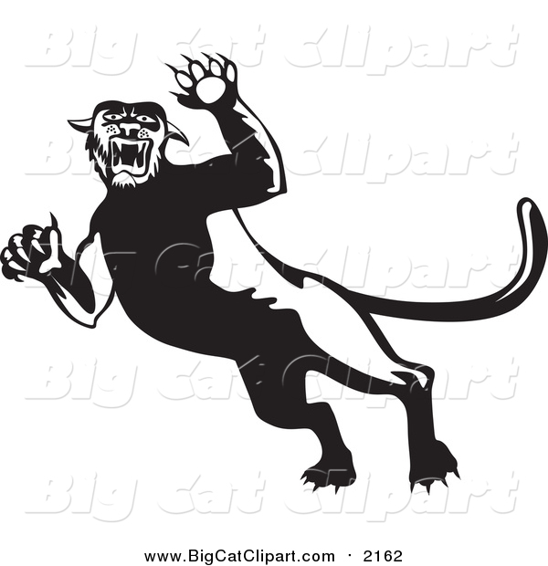 Big Cat Vector Clipart of a Black and White Attacking Panther