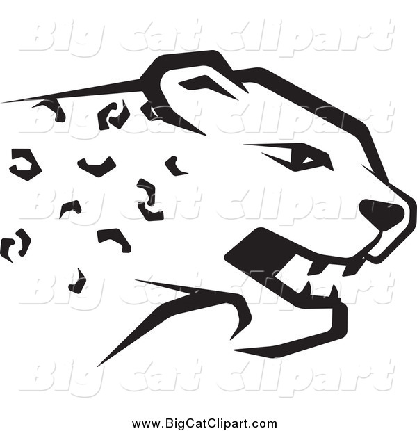 Big Cat Vector Clipart of a Black and White Cheetah Head in Profile
