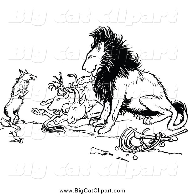 Big Cat Vector Clipart of a Black and White Fox and Lion with Prey