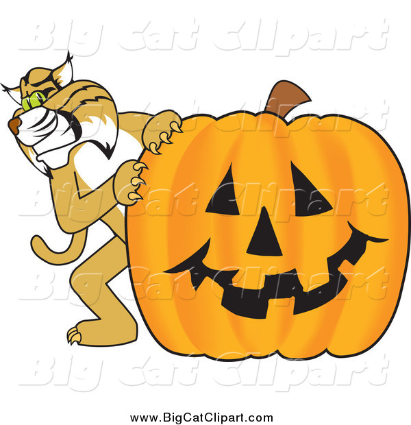 Big Cat Vector Clipart of a Bobcat with a Pumpkin