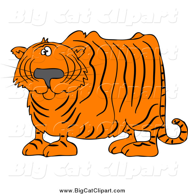 Big Cat Vector Clipart of a Confused Chubby Tiger