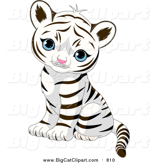 Big Cat Vector Clipart of a Cute Baby Tiger Cub Sitting and Looking Outwards
