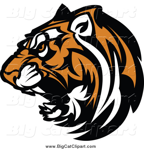 Big Cat Vector Clipart of a Growling Tiger Head