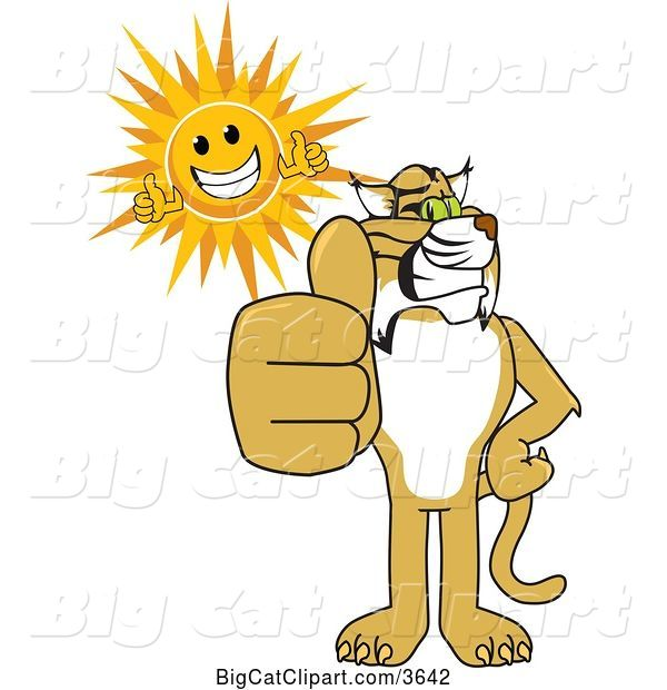 Vector Clipart of a Cartoon Bobcat School Mascot and Sun Holding Thumbs Up, Symbolizing Excellence