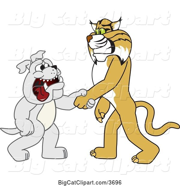 Vector Clipart of a Cartoon Bobcat School Mascot Shaking Hands with a Bulldog, Symbolizing Acceptance and Introduction