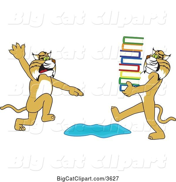 Vector Clipart of a Cartoon Bobcat School Mascot Warning Another That Is Carrying a Stack of Books About a Puddle, Symbolizing Being Proactive