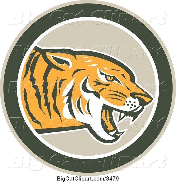 Vector Clipart of a Retro Growling Tiger in a Green Circle