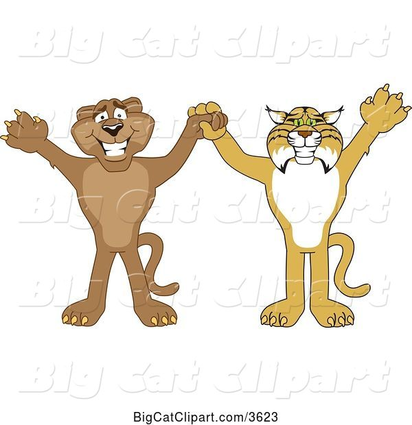Vector Clipart of Cartoon Bobcat and Cougar School Mascots Holding Hands and Cheering, Symbolizing Teamwork and Sportsmanship