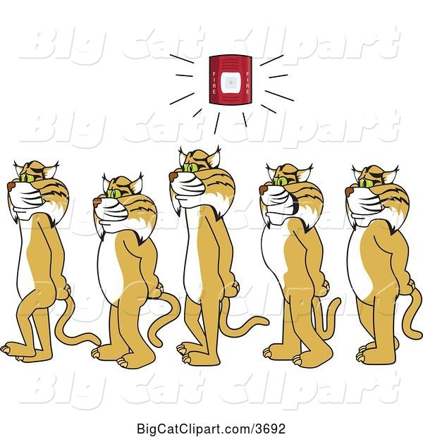 Vector Clipart of Cartoon Bobcat School Mascots Walking in Line As a Fire Alarm Goes Off, Symbolizing Safety