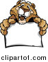 Big Cat Cartoon Vector Clipart of a Friendly Couger Holding a Sign by Chromaco