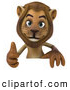 Big Cat Vector Clipart of a Lion Character Giving the Thumbs up and Standing Behind a Blank Sign While Smiling by Julos