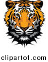 Big Cat Vector Clipart of a Tiger Mascot Head by Chromaco