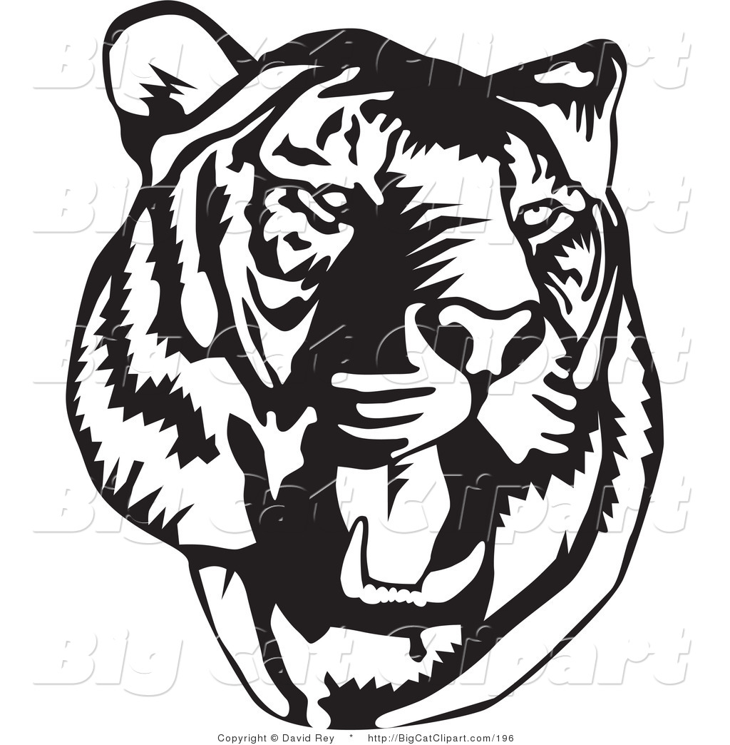 big cat vector clipart of a black and white roaring tiger head on rh bigcatclipart com tiger head clipart images tiger head clipart images